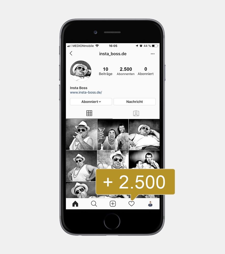 2500 Instagram Reel Views - International kaufen