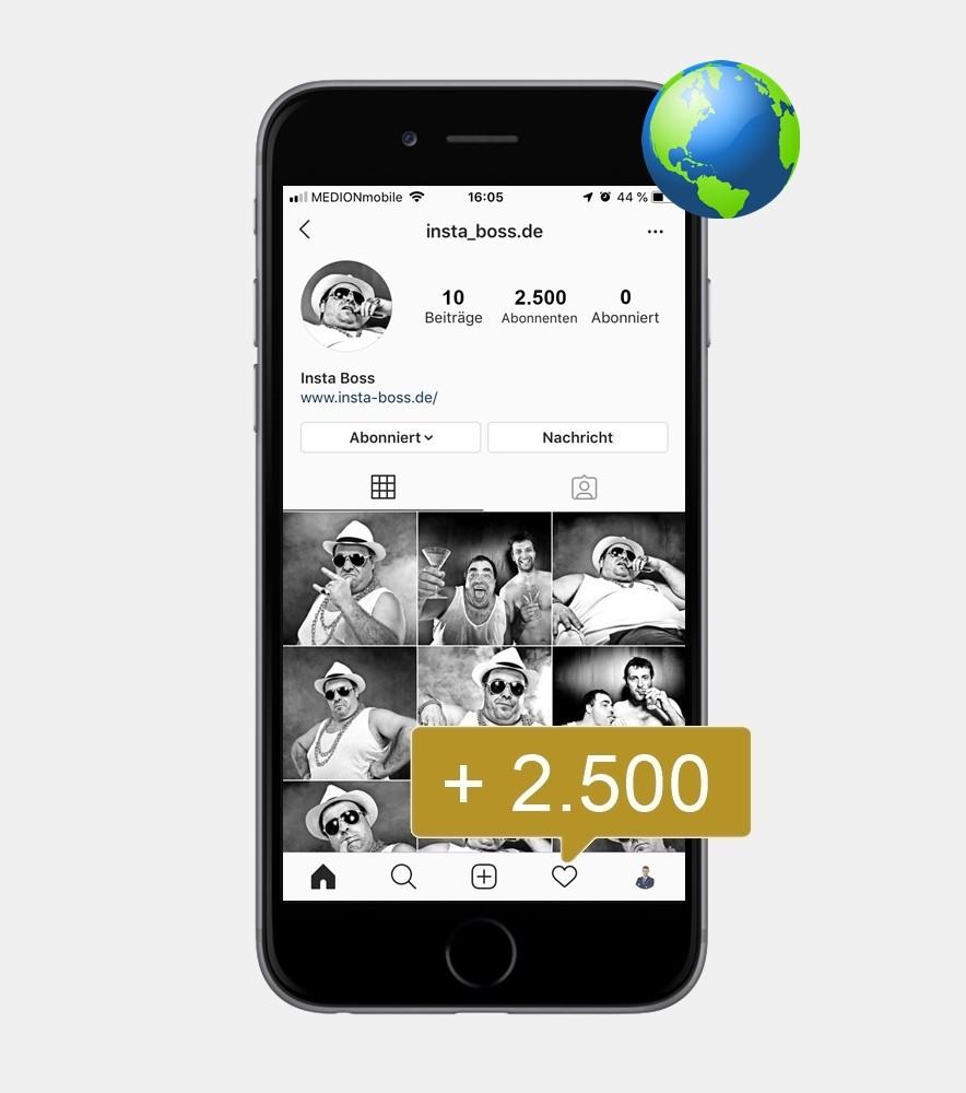 2.500 Instagram Follower - International kaufen